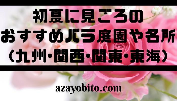 見ごろのおすすめバラ庭園や名所(九州・関西・関東・東海)