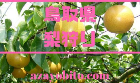 鳥取県梨狩り