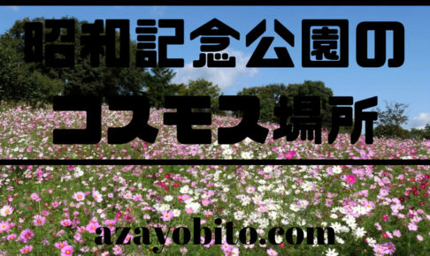 昭和記念公園のコスモス場所