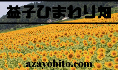 益子ひまわり畑