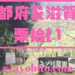 京都府&滋賀県栗拾い