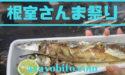 根室さんま祭り2019の日程や会場の場所|雨天中止はある?札幌でも直送市で